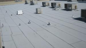 Flat Roof Phoenix